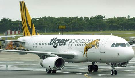Máy bay hãng Tiger Airways. Ảnh: Internet.