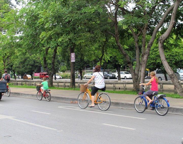 ChiangMai 5