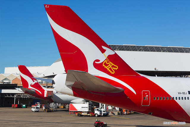 Qantas Australia world cup