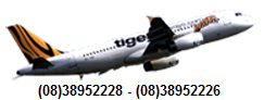 tigerairways vietnam